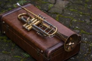 Consider Purchasing Custom Musical Instrument Cases
